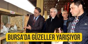 Bursa'da 'En Güzeller' Yarıştı